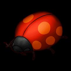 キョウソウマムシ