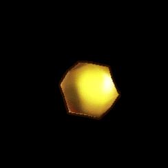 金トナカイの鼻