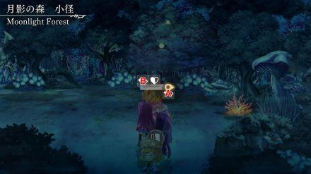 月影の森 小径