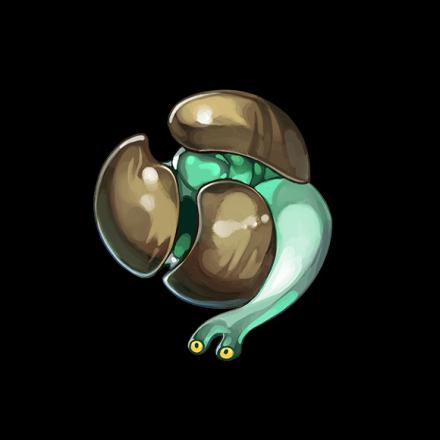 サンマイハマグリ