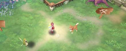 ファームペット 犬(猫)