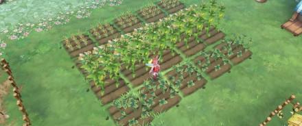 ファーム 作物生産