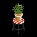 ユニオン盆栽