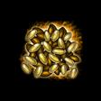 幸運の種子
